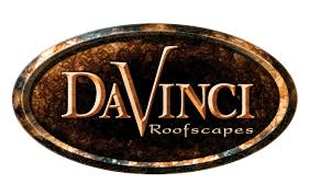 vendor09 - daVinci logo